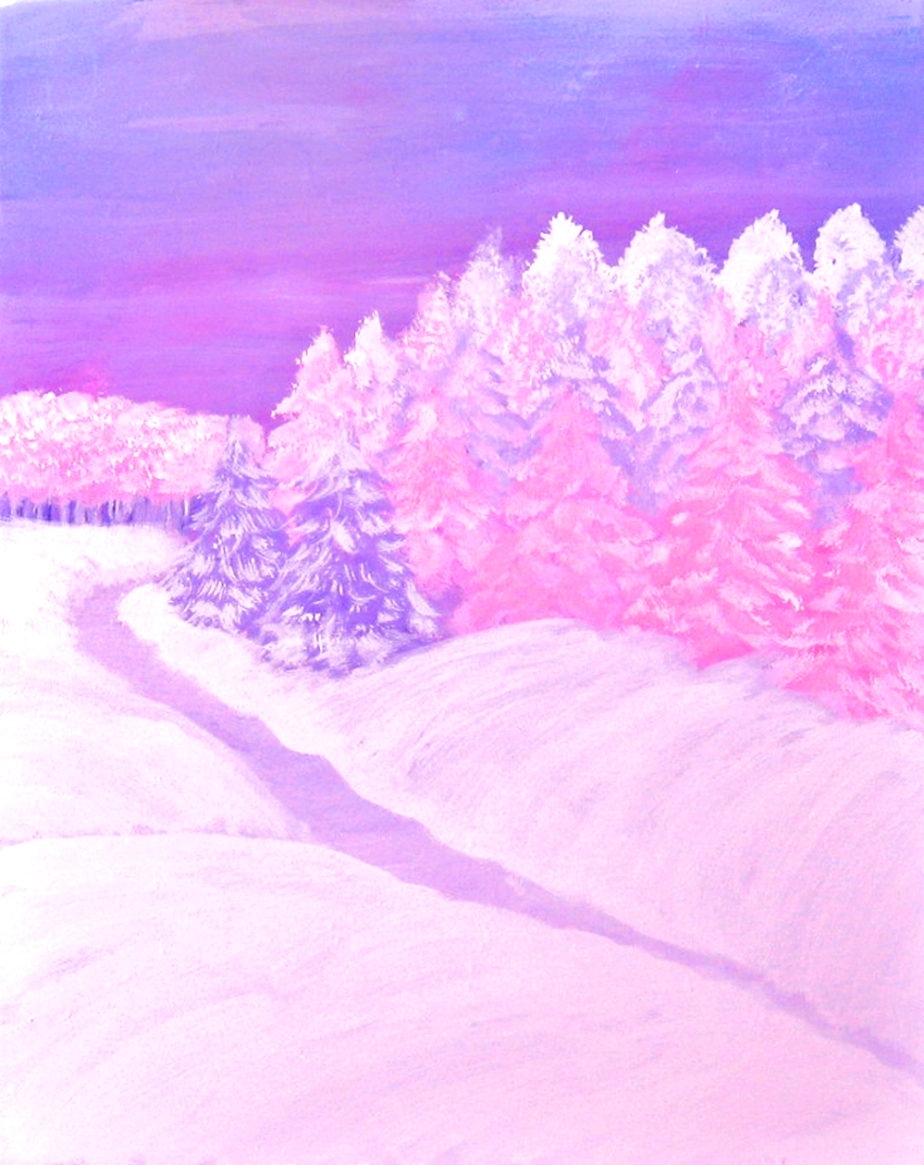 """Winter Wonderland in Pink"""