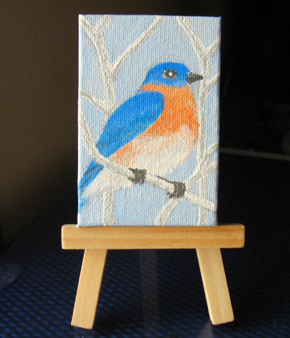 """Northern Bluebird"""