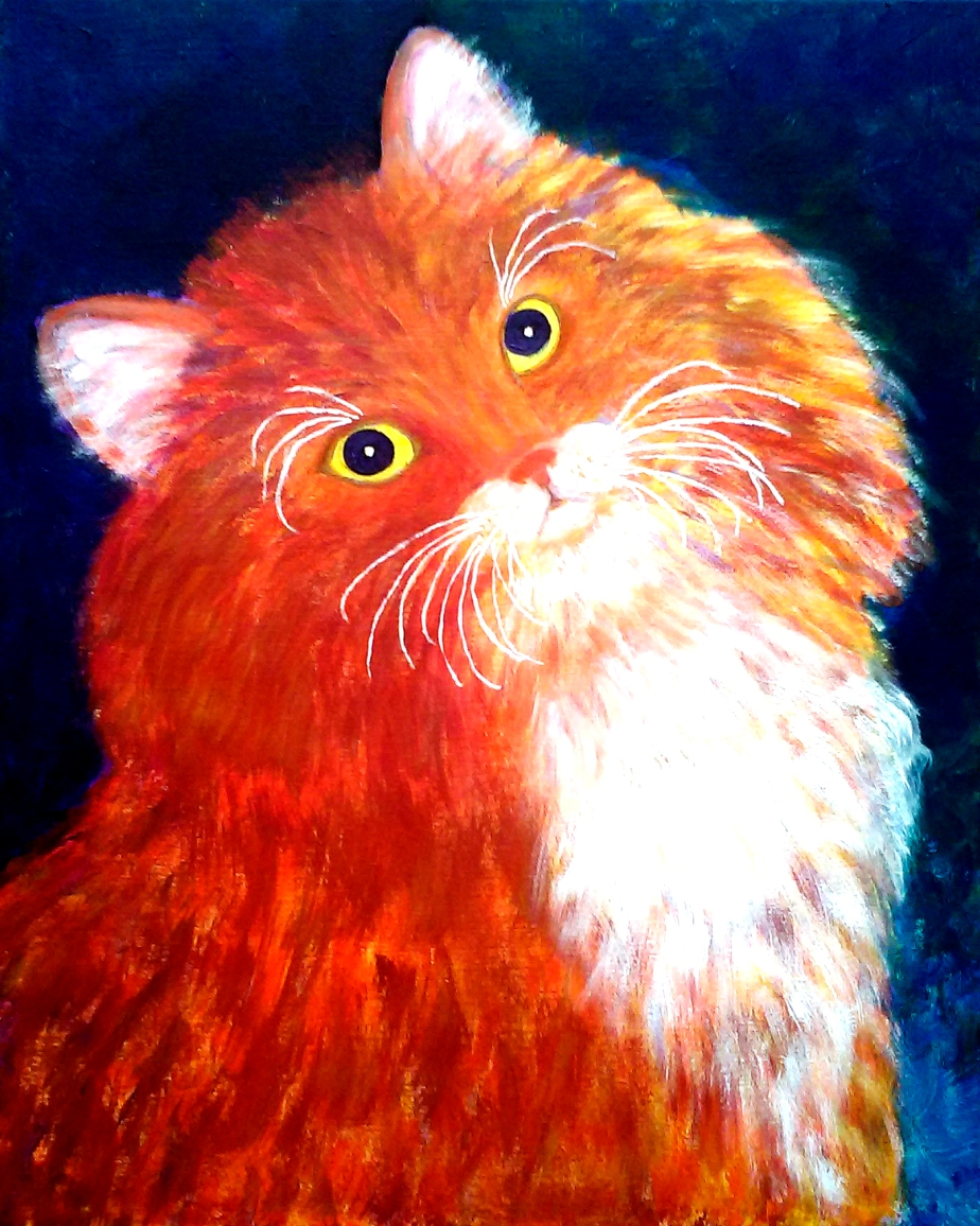 """Orange and White Cat"""