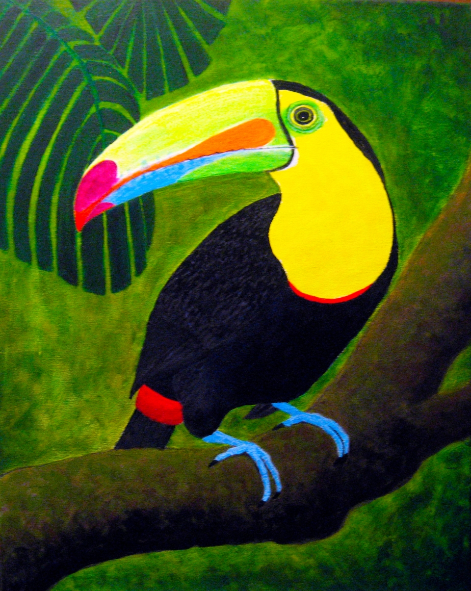 """Keel-billed Toucan"""